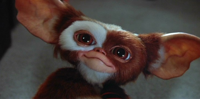 Zach Galligan Says Warner Bros. Wants 'Gremlins 3' Eventually
