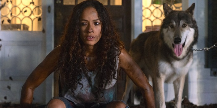 MVD and Parade Deck Acquire Bev Land's 'Lycan' Werewolf Flick (Trailer)