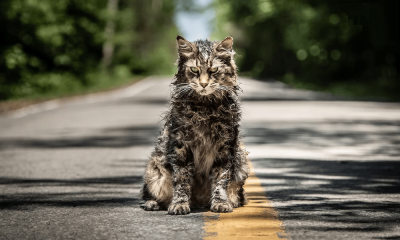 Church is Resurrected in First Photo from the 'Pet Sematary' Remake