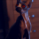 New 'Pet Graveyard' Clip Reveals the Grim Reaper's Sinister Cat