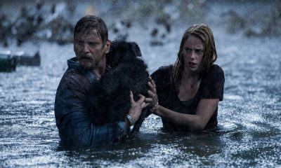 Official 'Crawl' Trailer Deals With Vicious Alligators and a Hurricane