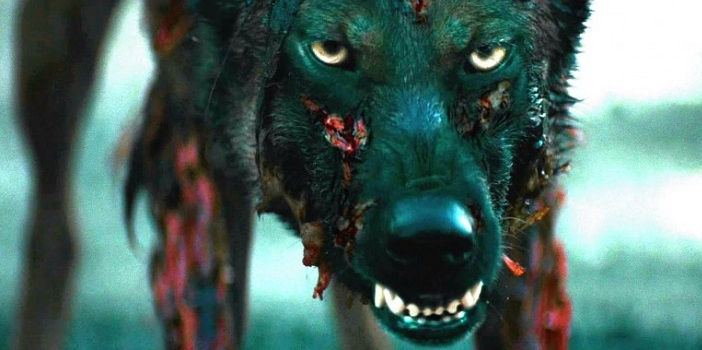 Eli Roth's Produced Cabin Fever Reboot Comes to Blu-Ray in the (UK)