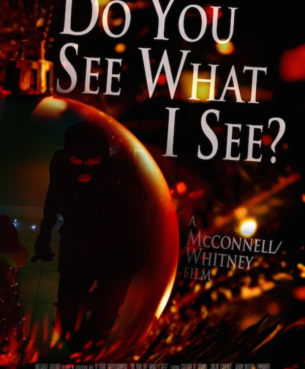 Do You See What I See Poster