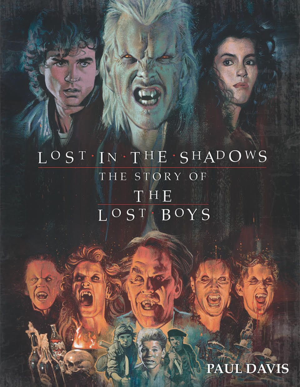 The Lost Boys Lost in the Shadows Book
