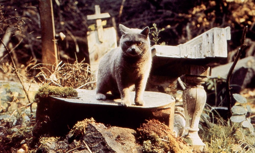 Paramount's 'Pet Sematary' Remake Creeps in Two Weeks Early
