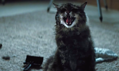 MPAA Grants 'Pet Sematary' an R-Rating for Horror Violence and Bloody Images