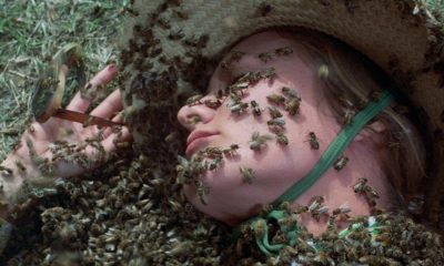 Screenbound Pictures Unleashing British Horror 'The Deadly Bees' on (UK) Blu-Ray