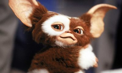 """Gremlins: Secrets of the Mogwai"" Set to Debut in 2021 on HBO"